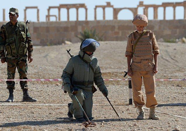 L'équipe de démineurs à Palmyre