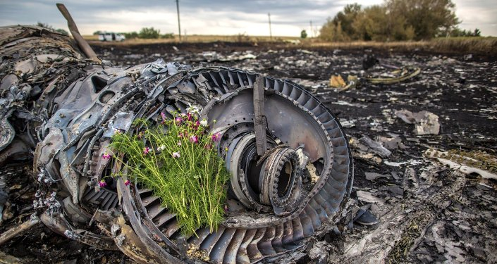 le crash du vol MH17