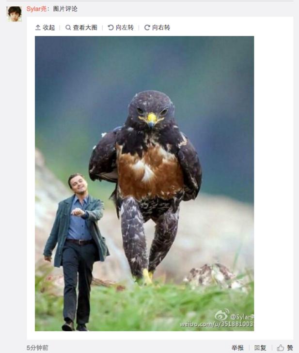 Image publiée dans les commentaires sur le compte de DiCaprio sur Weibo