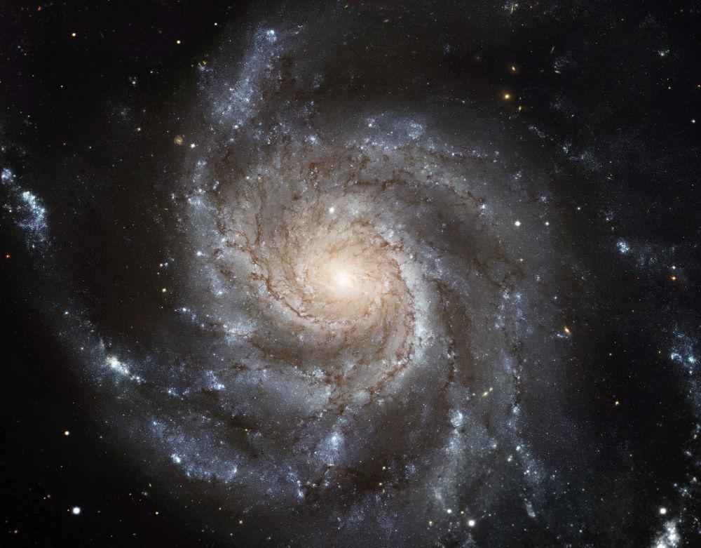 La galaxie du Moulinet est une galaxie spirale située dans la constellation de la Grande Ourse