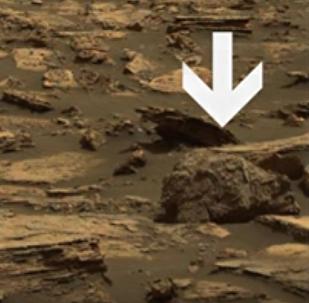 Une photo de Mars où l'on peut voir un grizzly