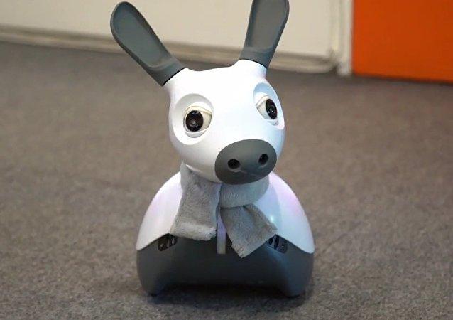Ce chien-robot britannique qui sait penser et se réjouir