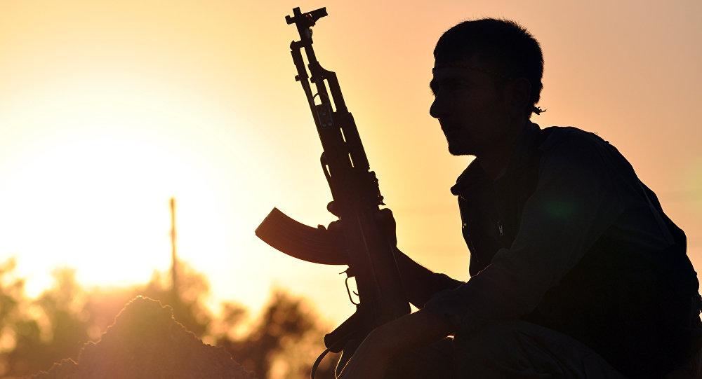 Ankara explique pourquoi il faut chasser Daech de Raqqa sans l'aide des Kurdes