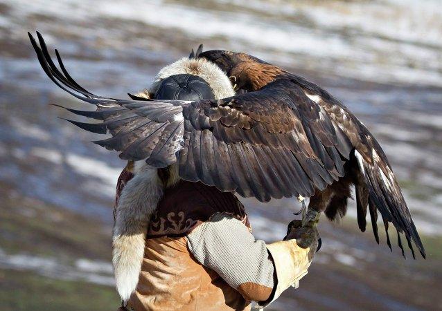 Un chasseur avec un aigle