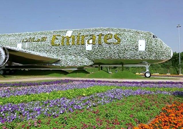 Dubaï, s'offre le record du monde du site le plus fleuri
