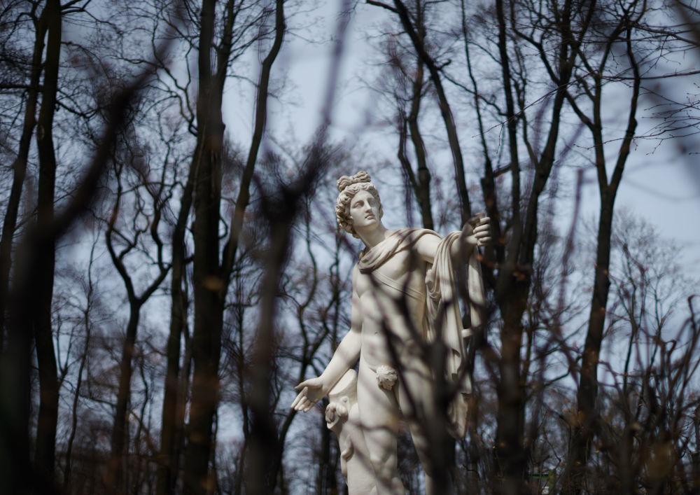Sculpture d'Apollon du Belvédère dans le Jardin d'été à Saint-Pétersbourg