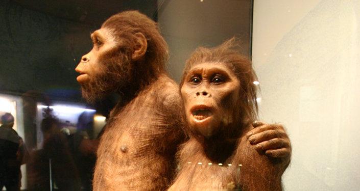 Des australopithèques