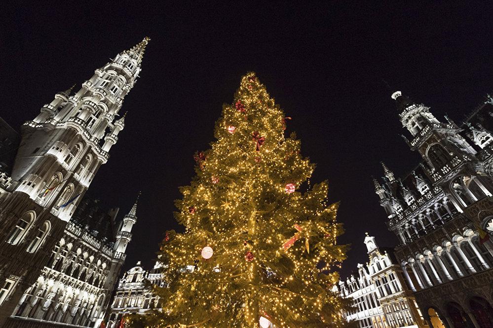 Le sapin de Noël installé sur la Grande Place à Bruxelles a été apporté de Slovénie