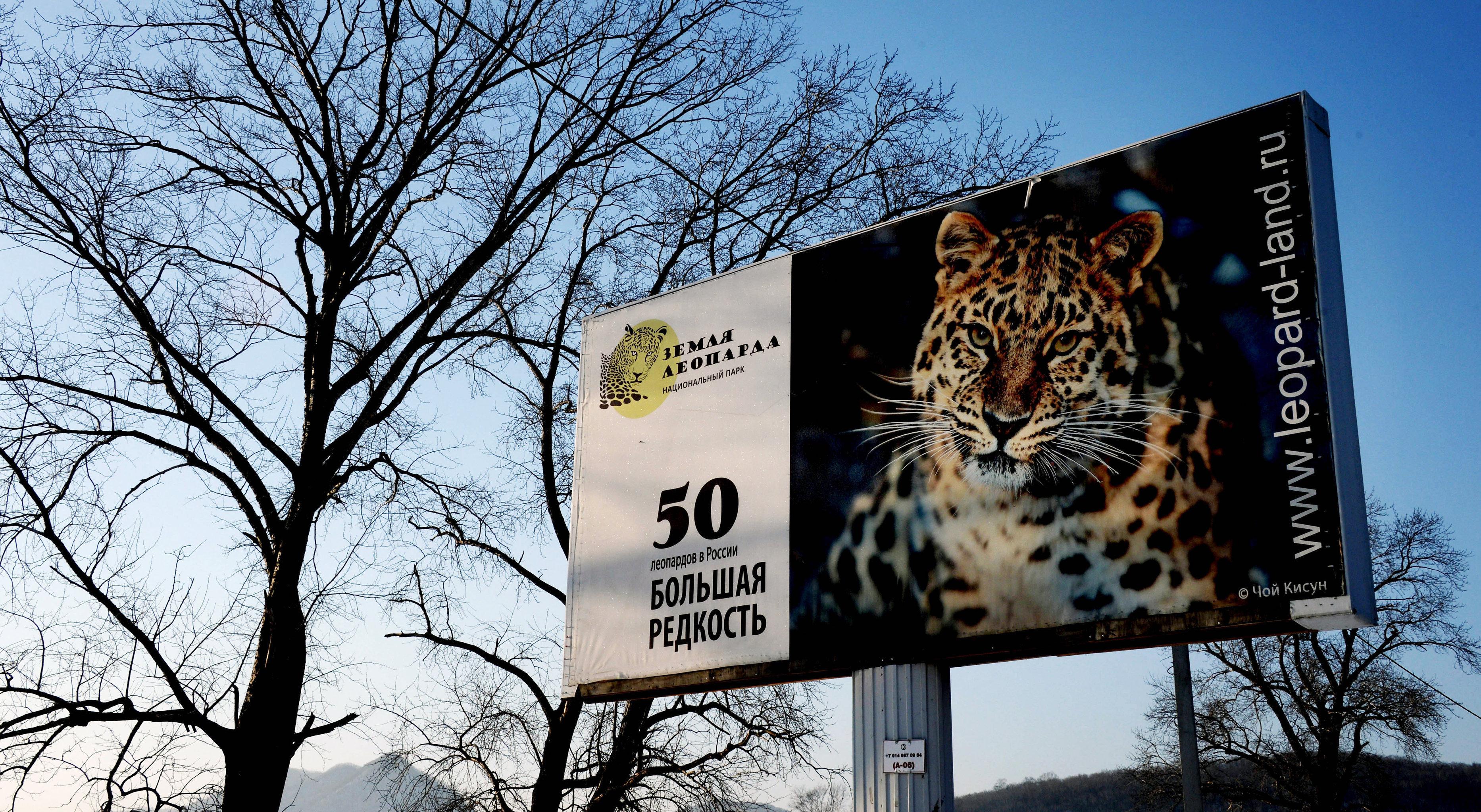 Le parc national Terre du léopard dans le territoire du Primorié