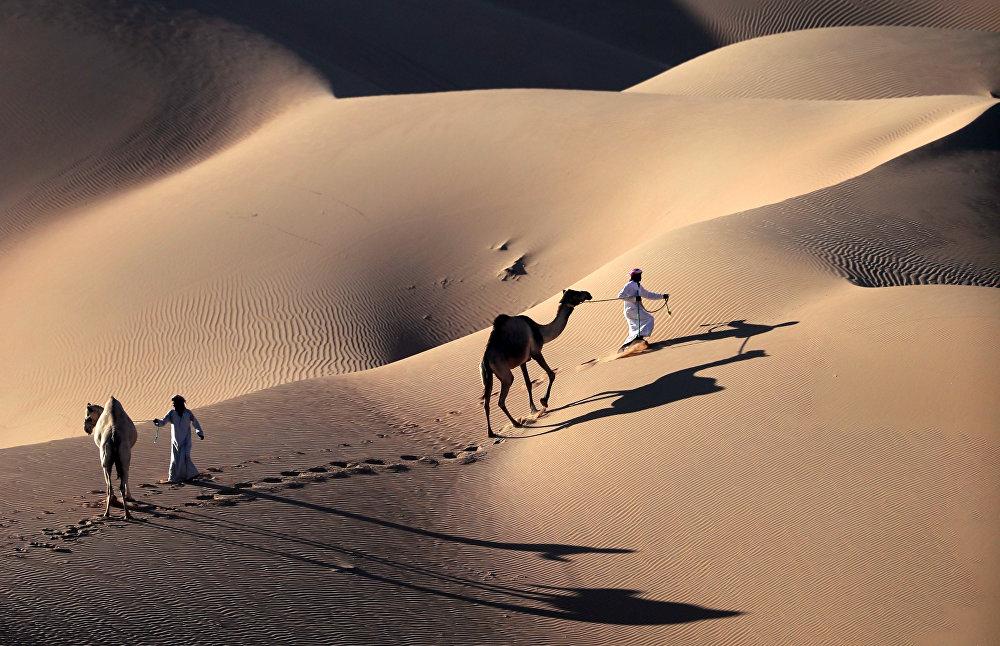 Des éleveurs de chameaux dans le désert de Liwa, aux Émirats arabes unis