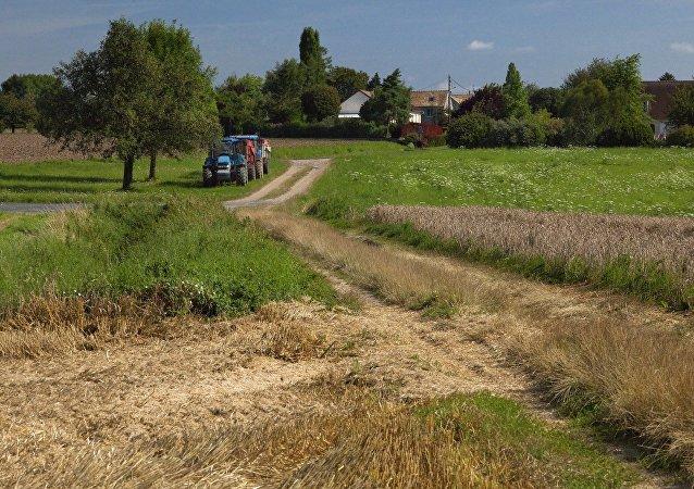 Terre agricole. Image d'illustration