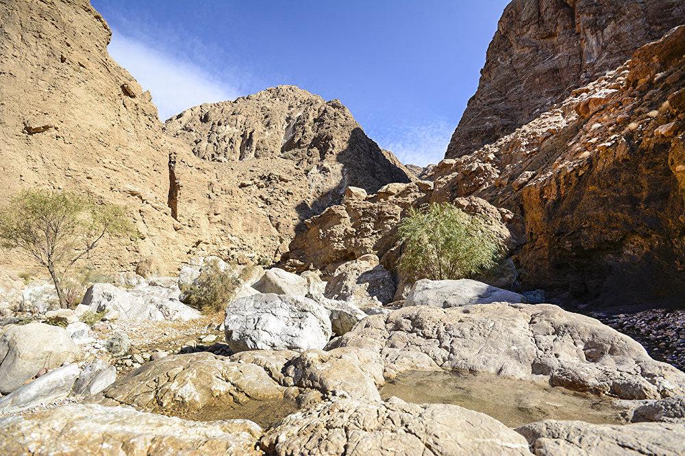 Tabas, une ville-oasis en plein cœur d'un du désert iranien