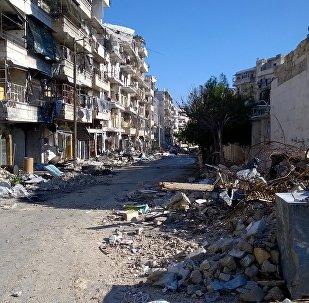L'armée syrienne reprend à Daech 29 villages à l'est d'Alep