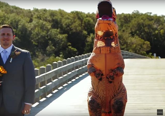 Un costume de T-Rex