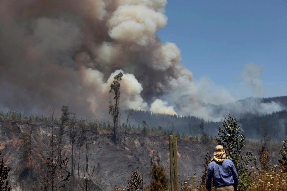 Un homme regarde un incendie au Chili