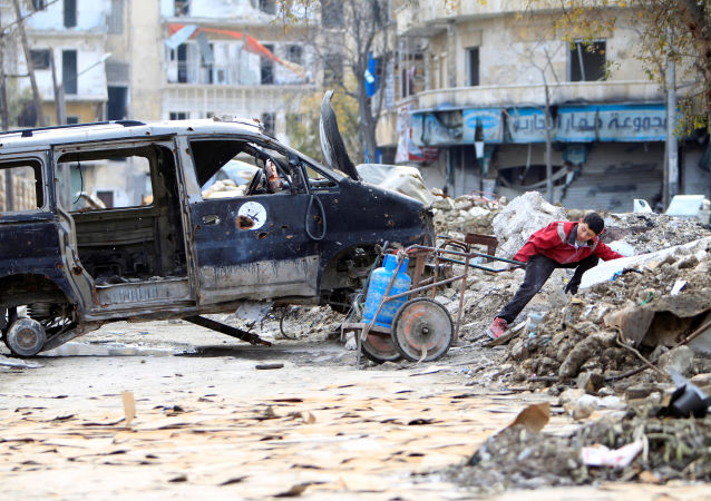Eurodéputé: «J'ai vu une Syrie qui n'existe pas dans nos médias»