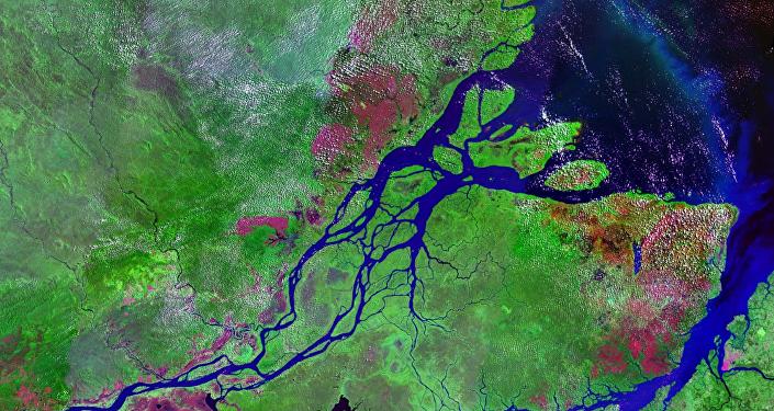 Le bassin de l'Amazone