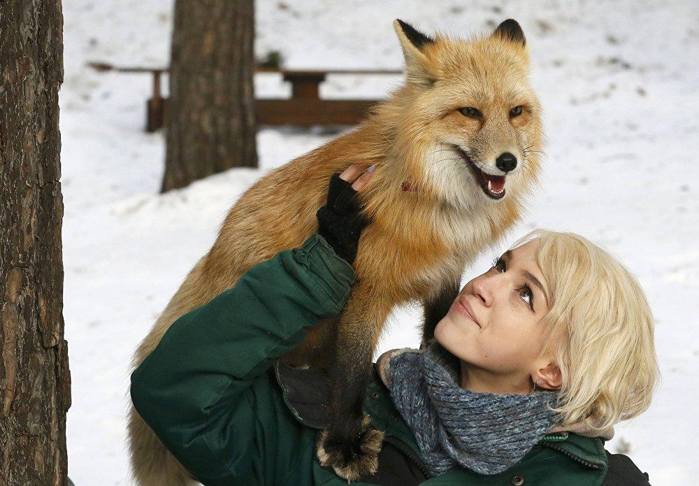 Quoi de neuf dans le monde animal ?