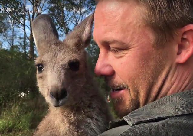 Quand ton meilleur pote est un kangourou!