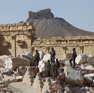 L'armée syrienne déloge Daech de la citadelle de Palmyre