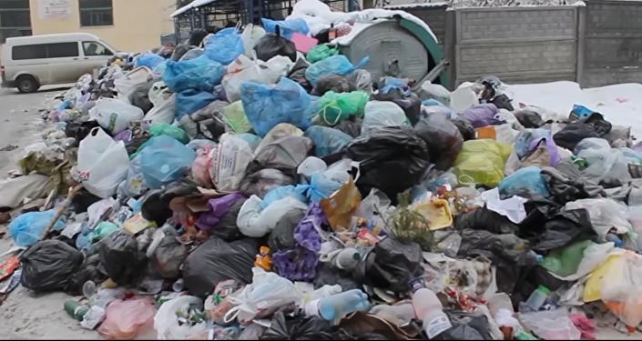 Les ordures à Lviv