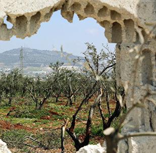 Province d'Idlib