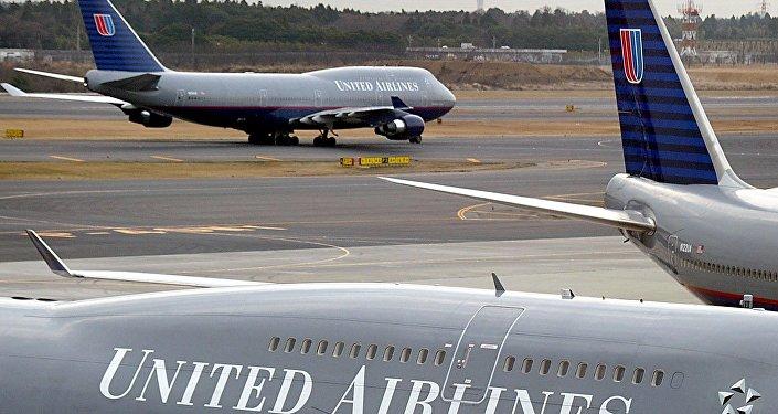 Le lapin le plus grand du monde retrouvé mort sur un vol d'United Airlines