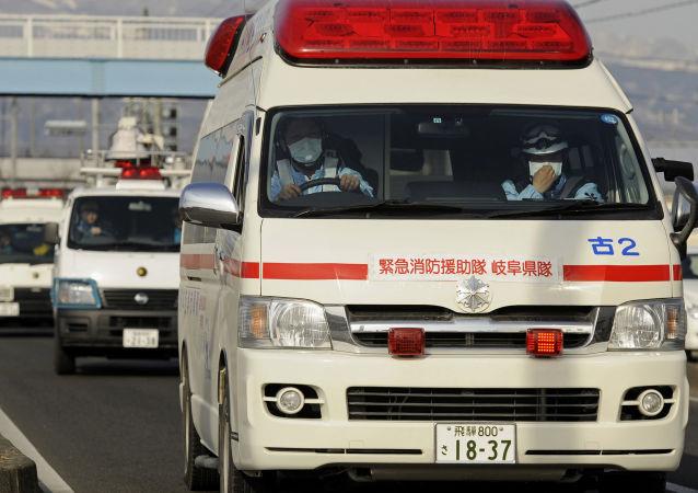 Assaillis par des guêpes, une vingtaine d'enfants hospitalisés au Japon