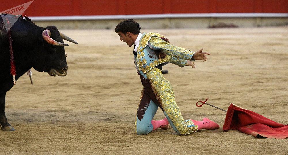 Des milliers de personnes manifestent contre la corrida en Espagne