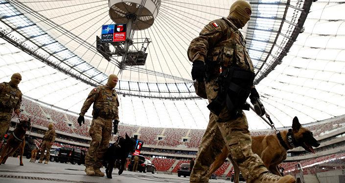 Militaires lors des exercices de l'Otan