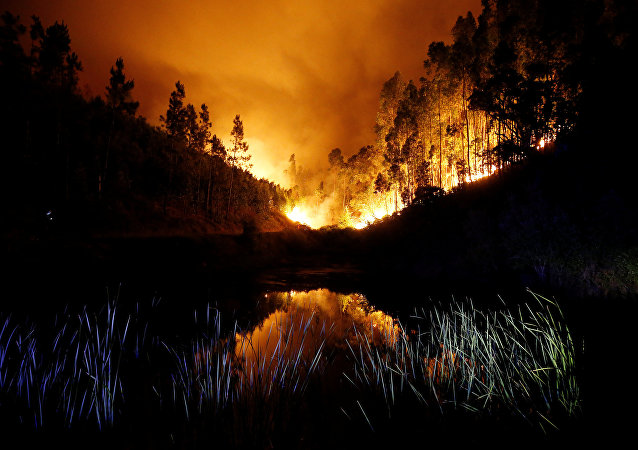 Incendies de forêt au Portugal