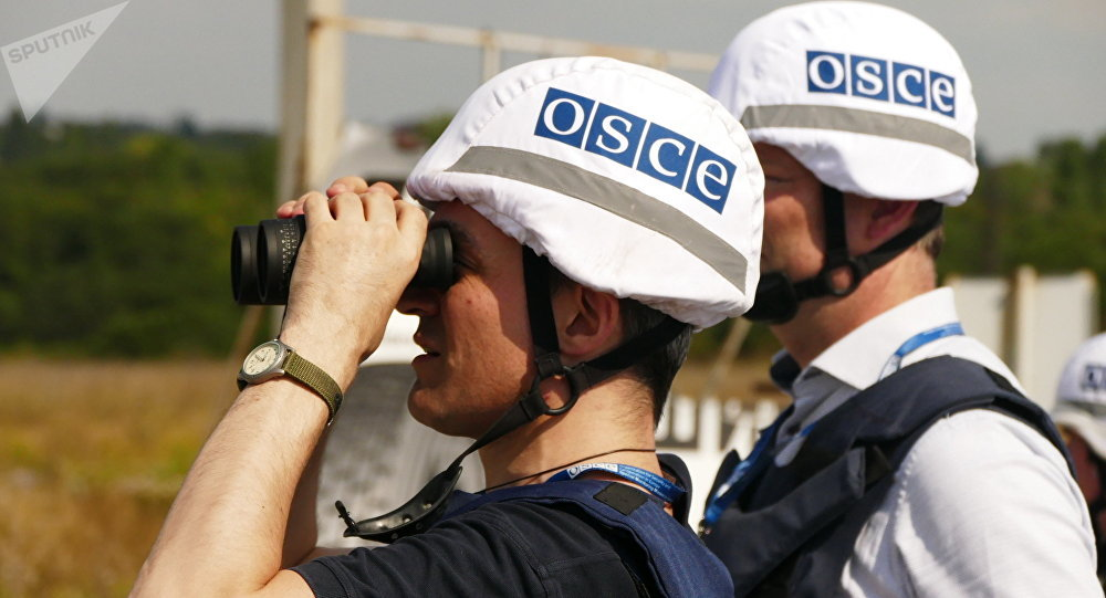 L'OSCE donne son avis quant à une opération de maintien de la paix en Ukraine