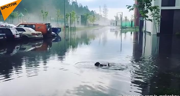 Moscou a besoin de l'Arche de Noé: un puissant orage s'est abattu sur la capitale russe
