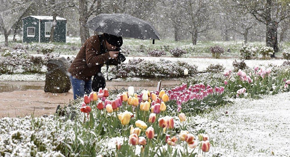 L'été sous la neige en Russie