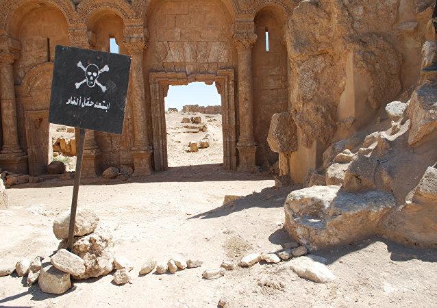 Citadelle de Resafa