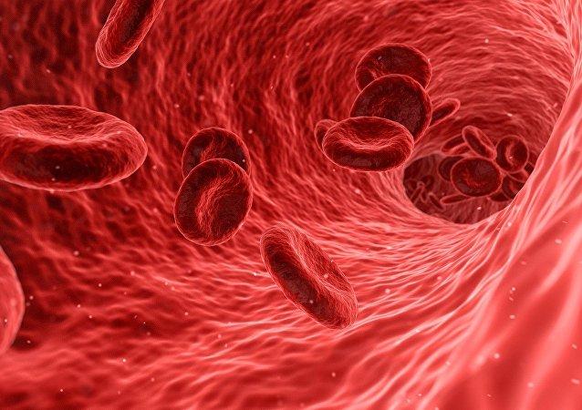 Cellules du sang