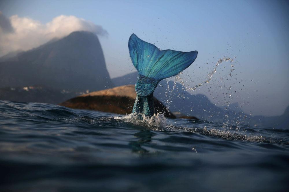 La monitrice pour sirènes Luciana Fuzetti dans la mer