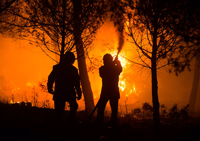 Incendies dans le sud de la France