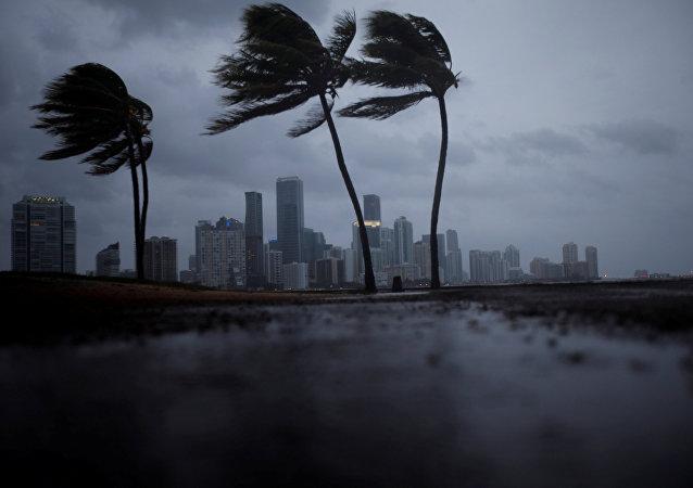 Irma in Florida