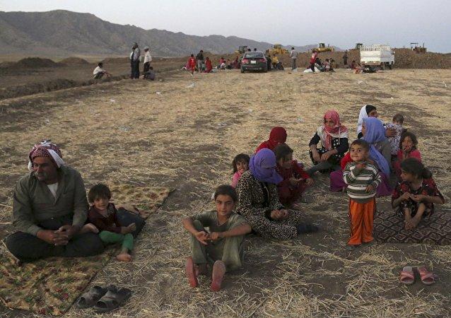 Yézidis en Irak