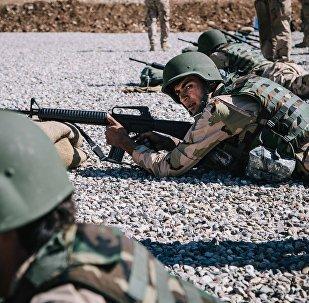 Peshmergas kurdes