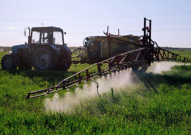 Les chercheurs russes ont mis au point un engrais efficace pour les semences