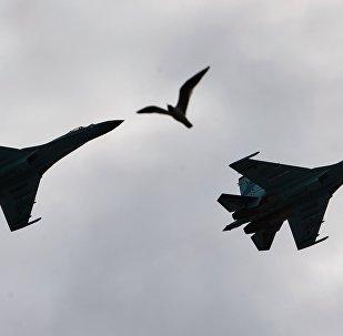 Des chasseurs Su-27