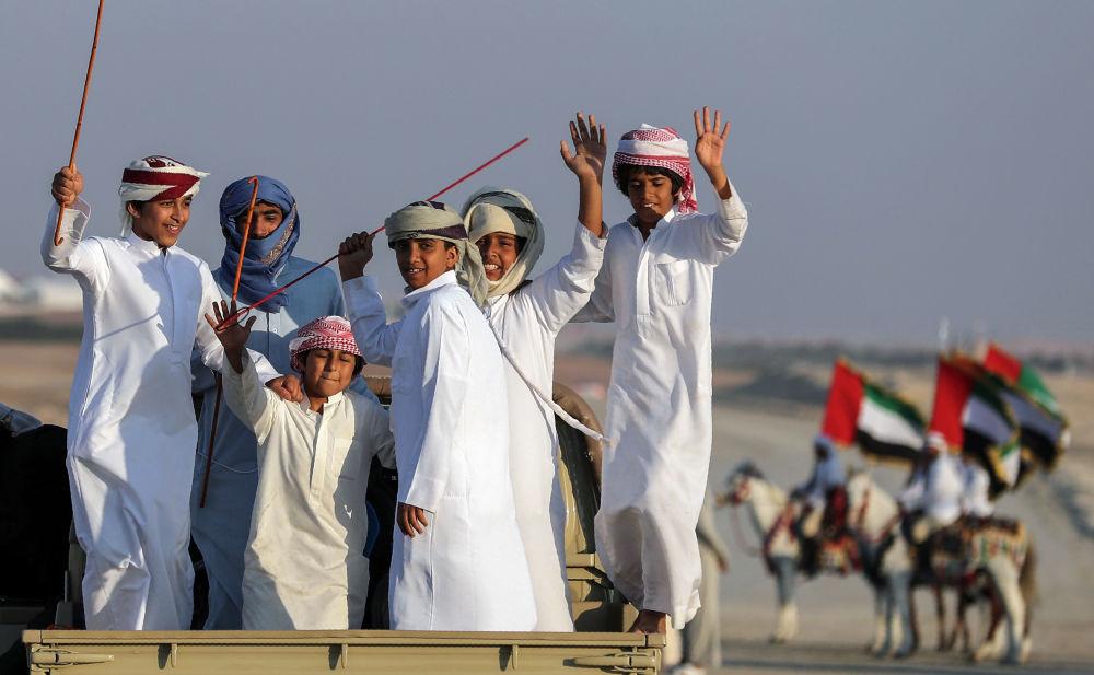 Festival de dromadaires aux Émirats