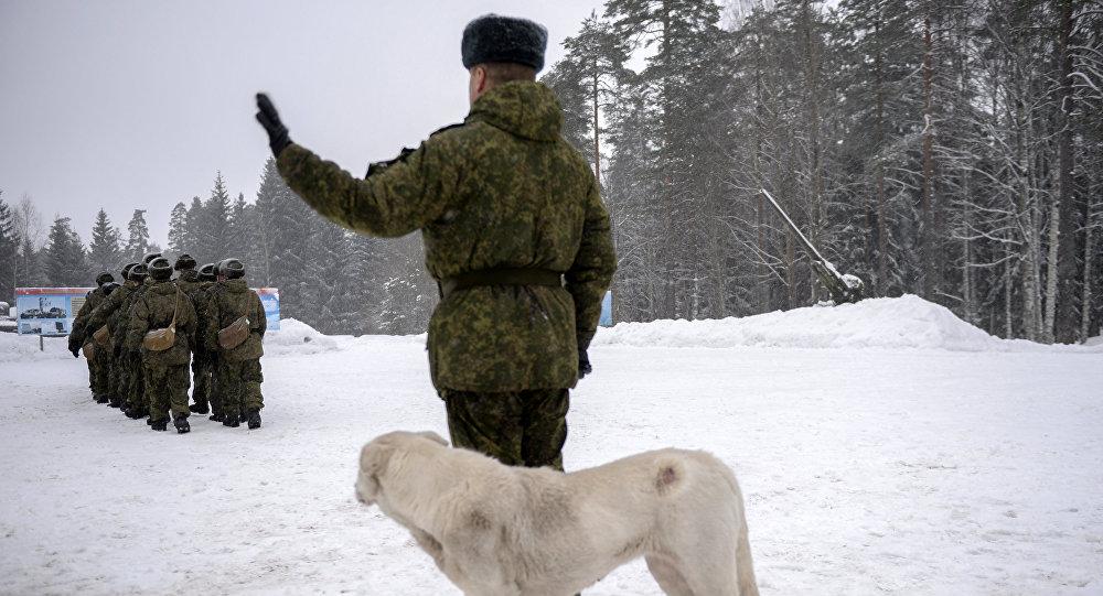 des militaires russes et un chien