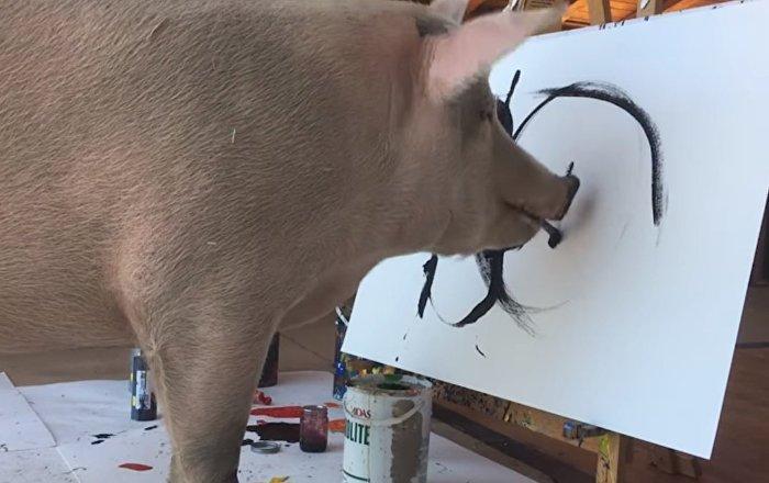 Tout le monde ne peut pas dessiner comme ce cochon!