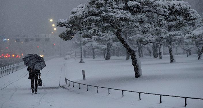 Chute de neige au Japon