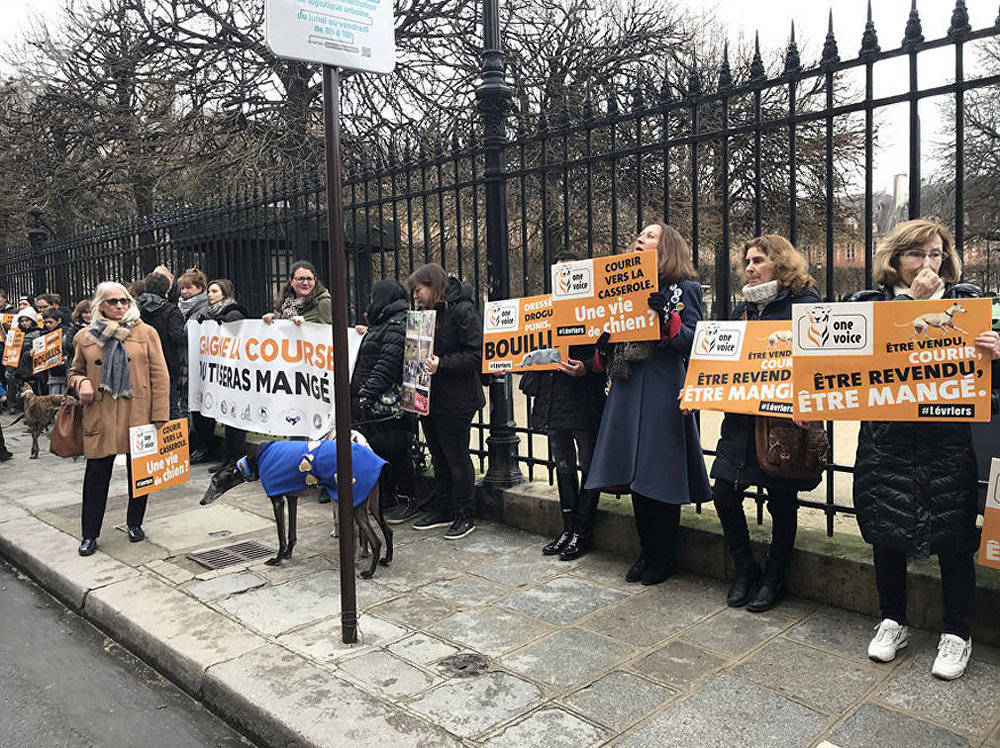 Manifestation contre l'exploitation des lévriers à Paris