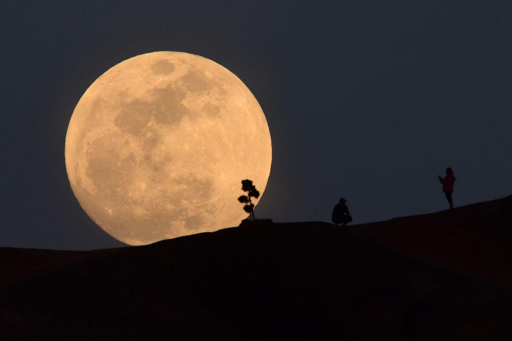 Une soixantaine de lunes sous le soleil (French Edition)