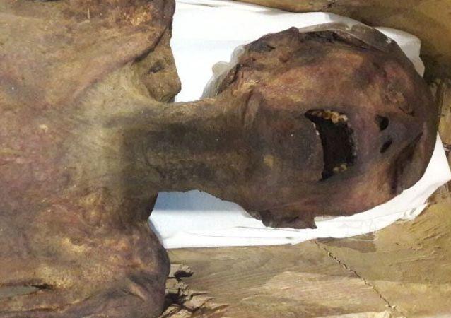La momie «hurlante» d'un prince coupable de traitrise exposée au Caire